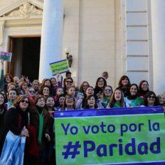 Lucha. El proyecto fue acompañado por muchas mujeres en la explanada y en las gradas de la Cámara de Diputados.