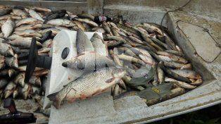 Secuestraron 1.603 pescados depredados en la zona de islas de Santa Fe
