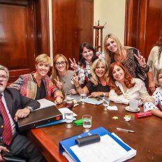Aborto legal: Cristina Fernández anunció cómo votará el FPV en el Senado