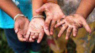 Trabajo infantil, un flagelo naturalizado al que Santa Fe da batalla