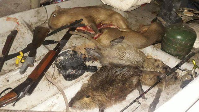 Secuestraron especies protegidas cazadas a un depredador