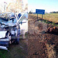 Un automovilista chocó a dos caballos sueltos en la ruta Nº 70
