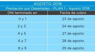 Cronograma de Anses del mes de agosto