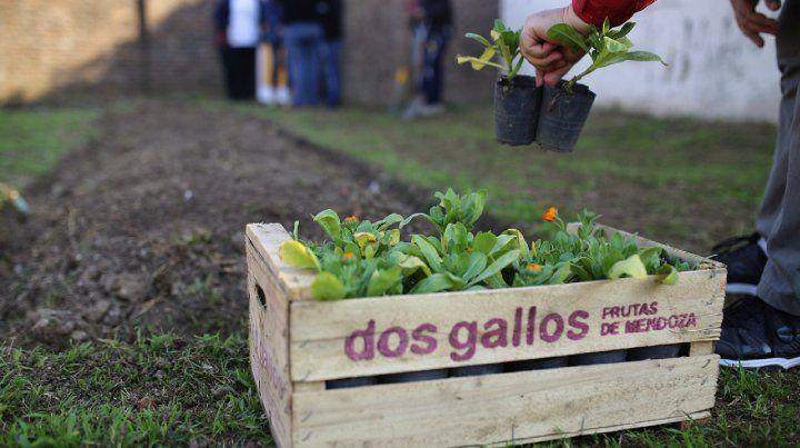 La iniciativa se implementa en el barrio Santa Rosa de Lima.