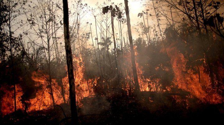 Bomberos Voluntarios de Santa Fe viajan a Brasil para combatir los incendios