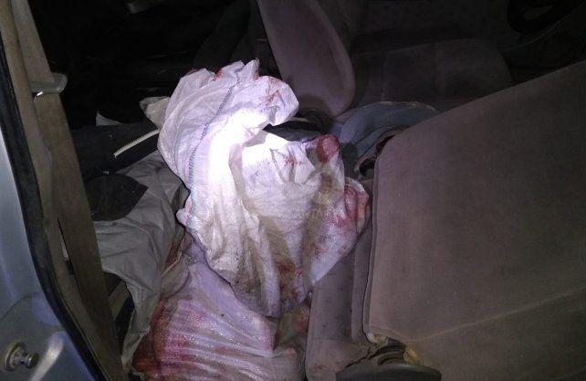 El animal estaba en el interior del automóvil.