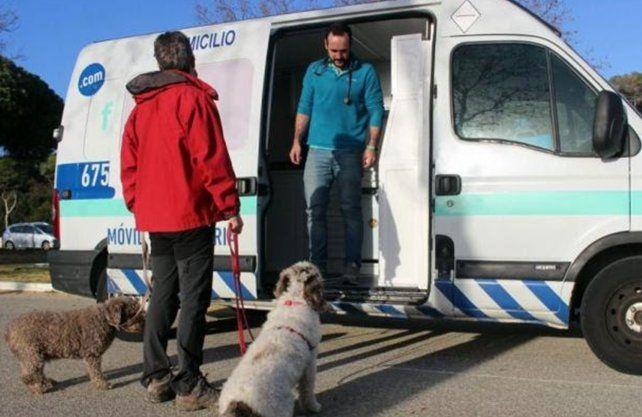 Ambulancia veterinaria