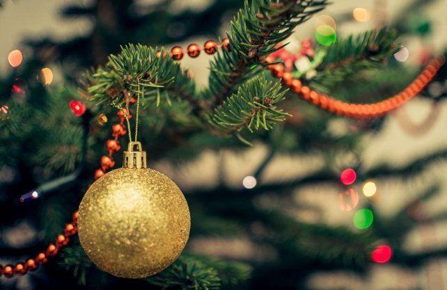 ¿Por qué el Árbol de Navidad se arma el 8 de diciembre?