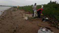 Los trabajos de limpieza realizados en la zona de Adelina Este en Santo Tomé.