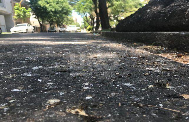 Calle 4 de Enero