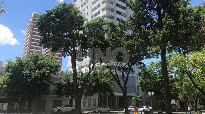 Esquina 4 de Enero y Santiago del Estero. Así lucen hoy los árboles que fueron podados a mediados del año pasado.