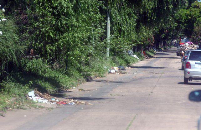 Vecinos reclaman limpieza y desmalezamiento en Pasaje Irala y Facundo Zuviría.