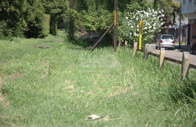 Los pastos altos sobre la vía del tren Belgrano Cargas y las grandes plantas convierten a la zona en una boca de lobo para arrebatos y en un vía de escape para los delincuentes.