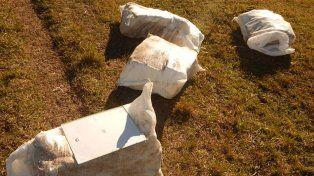 Descubrieron que un avión arrojaba bultos con marihuana a un campo cerca de Concordia