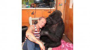 Un músico de los Red Hot Chili Peppers le prestó su bajo a una gorila y pasó algo increíble