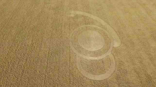 Nuevas marcas extrañas en un campo de Malabrigo