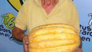 Un entrerriano cosechó un melón de más de siete kilos