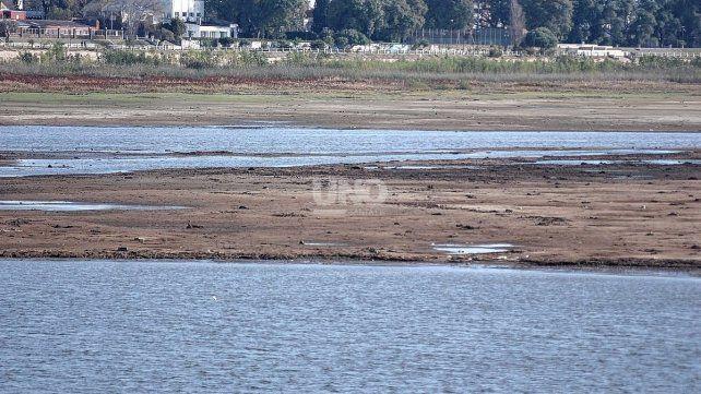 La seca de las lagunas afectó a los depredadores de los mosquitos.
